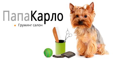 Купить сухой и влажный корм Royal Canin (Роял Канин) оптом